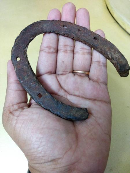 The horseshoe first belonged to Gajraj Singh Mahajan's grandfather.